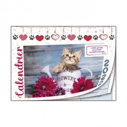 """Calendriers 12 pages """"Chat-Chien"""""""