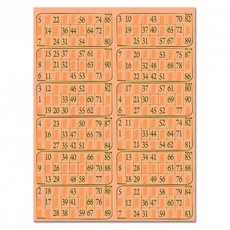 Plaques de 12 cartes de loto Bristol (lot de 83)