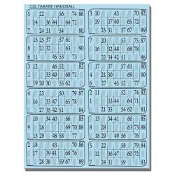 Plaques de 12 cartes de loto Bristol personnalisées (lot de 83)