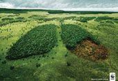 PHOTO-WWF.jpg